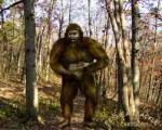bigfoot in woods montana lee 93 highway dies hoax