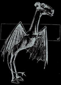 426px-Jersey_Devil_Philadelphia_Post_1909 crytids